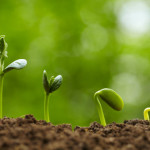The Secret to Unpredictable Growth